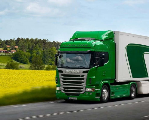 Sustainable Truck perrot